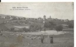 Aveyron SAINT VICTOR Arrt SAINT AFFRIQUE Berger Moutons - Saint Victor