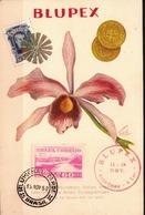 Brazil Maximum Card - Orchids