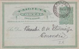 Entier  Postal Stationery - Uruguay - 1896 - Uruguay