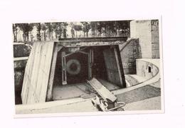 Pièce Du Leugenboom à Moere.Chariot Pour Transport De Munitions, De L'abri à La Pièce. - Guerre 1914-18