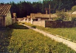 Sacro Eremo Di Camaldoli - Arezzo - Veduta Delle Celle - Formato Grande Viaggiata – E 13 - Arezzo