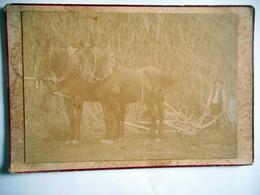 PHOTO GRAND CDV 19 Eme Paysan Ses Chevaux Et Sa Charrue LERUSTE PARIS - Oud (voor 1900)
