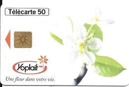 CARTE-PRIVEE-50U-EN1503-GemB-10/96-YOPLAIT-UTILISE-TBE - Francia