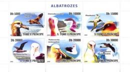 S. TOME & PRINCIPE 2008 - Birds Albatross 6v - YT 2702-2707, Mi 3537-3542 - Sao Tome And Principe