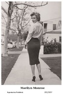 MARILYN MONROE - Film Star Pin Up PHOTO POSTCARD- Publisher Swiftsure 2000 (201/1057) - Artistas