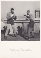 Nelson Mandela In Johannesburg 1954, South African Polititician Leader, Boxing Sparing, C1980s/90s Vintage Postcard - Célébrités