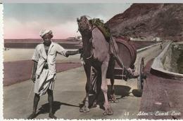 48. Aden- Camel Cart - Yémen