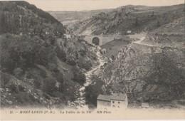 E11- 66) MONT LOUIS (PYRENEES ORIENTALES) LA VALLEE DU TET - (2 SCANS) - Autres Communes