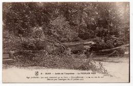 Dijon : Jardin De L'Arquebuse, La Chute Du Peuplier Noir (Edit. RG Dijon, N°31) - Dijon