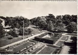 D33  TALENCE  Maison De Santé Protestante- Bagatelle- Le Jardin De L' Ecole  ..... - France