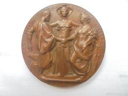 BRUXELLES-EXPO 1897 Par J.LAGAE+WOLFERS-159 GRAMMES - Professionnels / De Société