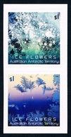 AUSTRALIAN ANTARCTIC TERRITORY (AAT) • 2016 • Ice Flowers - Self Adehesive • MNH (2 Stamps) - Nuovi