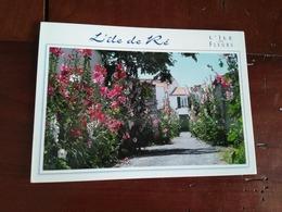 17 - L'Ile De Ré - Les Ruelles Fleuries - Ile De Ré
