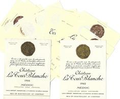 ETIQUETTE De VIN - Lot De 15 étiquettes Château LA TOUR BLANCHE- MEDOC (Bordeaux) Scans De Toutes Les étiquettes - Bordeaux