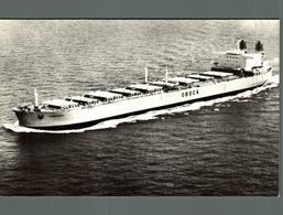 RPPC BJORGHOLM CARGO SHIP NORGE NORWAY - Commercio