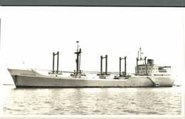 RPPC VIGRAFJORD CARGO SHIP NORGE NORWAY - Commercio