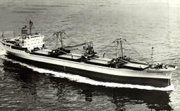 RPPC RANENFJORD CARGO SHIP NORGE NORWAY - Commercio