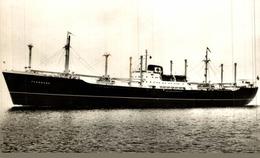 RPPC FERNBANK CARGO SHIP NORGE NORWAY - Commercio