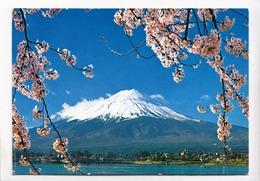 Mount Fuji And Cherry Blossoms, Japan, View From Kawaguchi Lake, 1985 Used Postcard [23438] - Japan