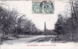 45 - Loiret -  MALESHERBES -  Allée Du Jeu De Paume - Malesherbes