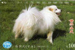 China - Dogs - World Famous Dog(10-7) - 1994.1J2(10-7) - Cina