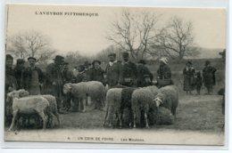 12 L'AVEYRON PITTORESQUE 4 VDC Un Coin De Foire Les Moutons Marchands  Et Le Facteur  1920  D11 2019 - Non Classificati
