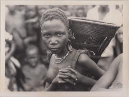 28703g CONGO BELGE -KIMBAU - FILLE BASUKU - Photo De Presse - Ethnographique - Van Den Heuvel -18x24c - Seins Nus - Afrika