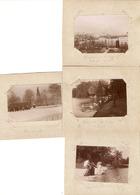 Lot De 4 Photographies Anciennes Du Rhône, Lyon (69), Rue Carnot (neige), Cygnes De La Tête D'Or, Photos Vers 1910 - Places