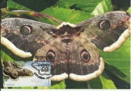 Carte Maximum - Portugal - Borboleta - Papillon - Butterfly - Saturnia Pyri - Timbre ATM - Butterflies