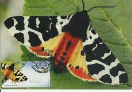 Carte Maximum - Portugal - Borboleta - Papillon - Butterfly - Atlantarctia Tigrina - Timbre ATM - Butterflies