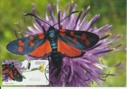 Carte Maximum - Portugal - Borboleta - Papillon - Butterfly - Zygaena Trifolii - Timbre ATM - Butterflies