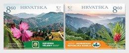 Kroatië / Croatia - Postfris / MNH - Complete Set Joint-Issue Met Korea 2019 - Kroatië