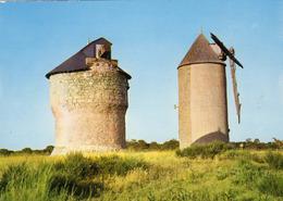 (56) - LA ROCHE BERNARD - Moulins De Marzan - La Roche-Bernard
