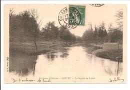 45 Olivet. La Source Du Loiret - Francia