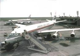 JAL Japan Airlines Douglas DC-8 JA8012 Avion At HND Aviation Airplane - 1946-....: Era Moderna
