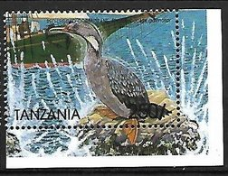 TANZANIA - MNH - 1999 -     Red-legged Cormorant    Phalacrocorax Gaimardi - Other