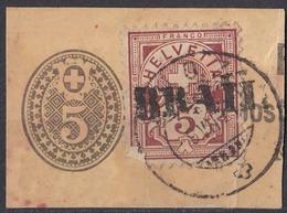 HELVETIA - SUISSE - SVIZZERA - 1882 - Yvert 65 Obliterato Su Frammento Di Interop Postale Da 5 Centesimi. - 1882-1906 Wappen, Stehende Helvetia & UPU