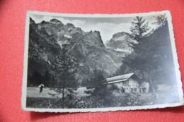 Bolzano No Trento Dolomiti Brenta Val D' Algone Stenico Rifugio Ghedina 1951 - Italia