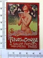 PETIT CHROMO ...PARFUM ...FLEURS DE MOUSSE....NAÏADE...PAPILLONS - Trade Cards
