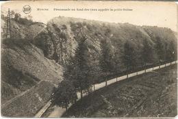 MARCHE - Promenade Au Fond Des Vaux, Appelée La Petite Suisse - Oblitération De 1921 - Edit. Jos. Maréchal, Marche - Marche-en-Famenne