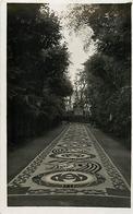 Themes Div-ref DD49- Carte Photo -jour De La Fete Dieu Dans Le Parc Des Peres Du St Esprit A Chevilly Larue  - - Chevilly Larue