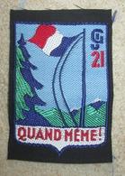 Insigne De CJF-Chantiers De Jeunesse N°21 - 1939-45