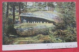 Alligator  Rock  Catskills  New York  Ref    3585 - Catskills