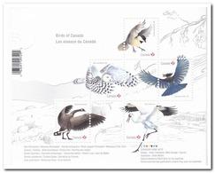 Canada 2018, Postfris MNH, Birds - 1952-.... Regering Van Elizabeth II