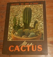 Mes Cactus. 1952. - Garden