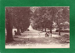 74 Annecy - Promenade Du Pâquier Animation Cpa Année 1914 Edit L L SELECTA  N°51 - Annecy