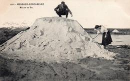Mesquer-kercabelec-mulon De Sel-bon état - La Baule-Escoublac