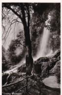AQ61 Uracher Wasserfall - RPPC - Bad Urach
