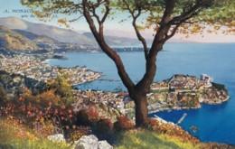 AQ61 Monaco Et Monte Carlo, Pris Du Signal - LL Postcard - Monaco
