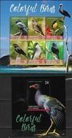 GRENADA CARRIACOU & PETITE MARTINIQUE, 2019, MNH,BIRDS,COLORFUL BIRDS, KINGFISHERS, SHEETLET+S/SHEET , HIGH FV - Birds